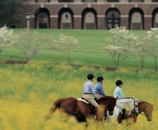Nonprofit Governance and the Closure of Sweet Briar College